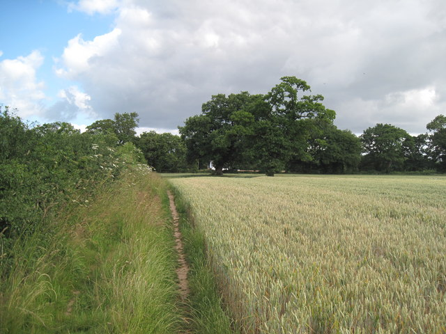 Looking north on Footpath