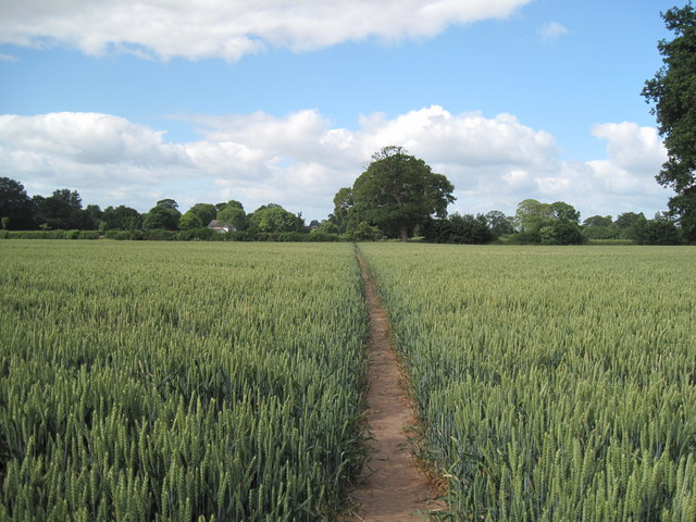 Footpath to Littleton Old Hall