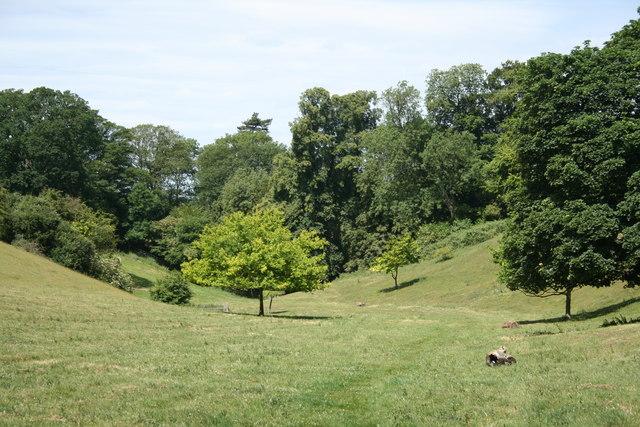 Cottingham Pocket Park