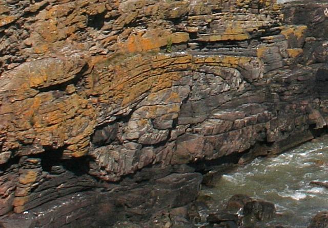 Fold in Cliffs near Bruce's Haven