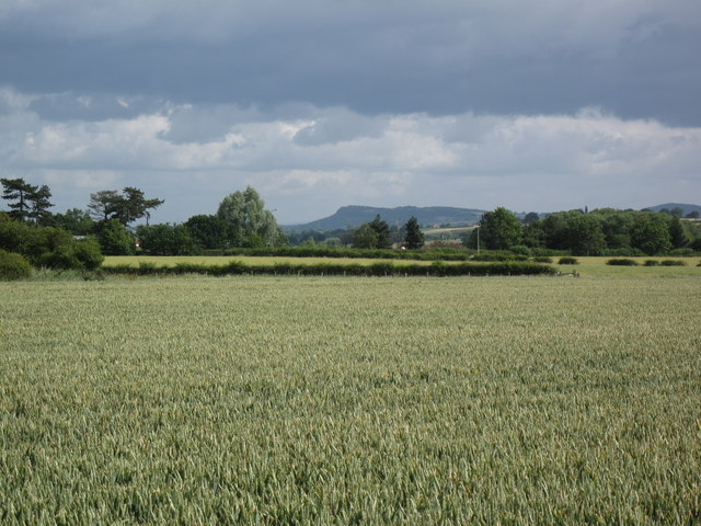 Farmland and view to Helsby Hill