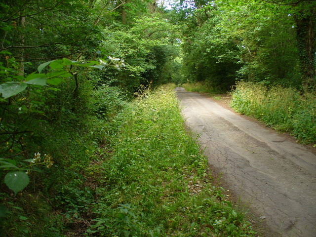 Bridleway to Nore