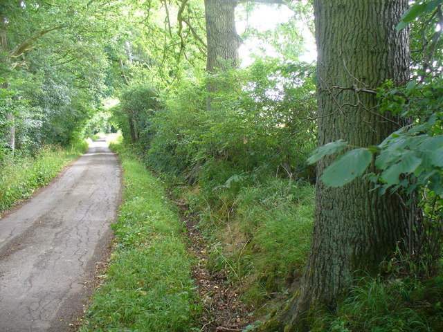 Bridleway to Smithbrook Kilns
