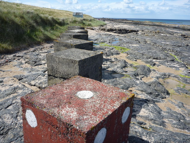 Stepping Stones : On The Anti-tank Blocks at Harkess Rocks, Bamburgh, Northumberland