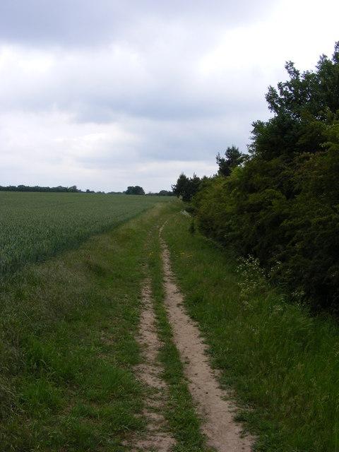 Footpath towards Trimley