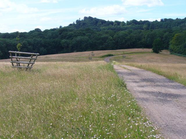 Footpath by Tilsey Farm