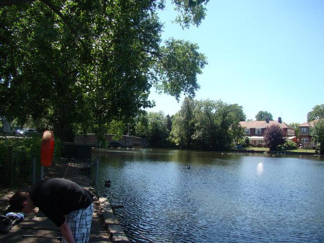 Lake in Raphael Park, looking back to the Main Road bridge