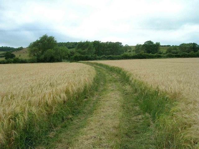 Bridleway to Ilmington Downs
