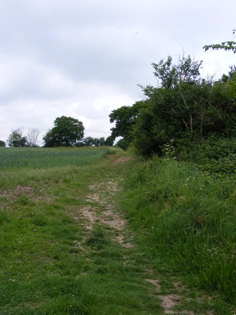 Footpath at edge of field