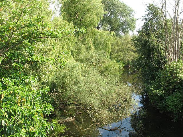 River Dane upstream of Byley Bridge
