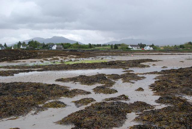 Waterloo shoreline