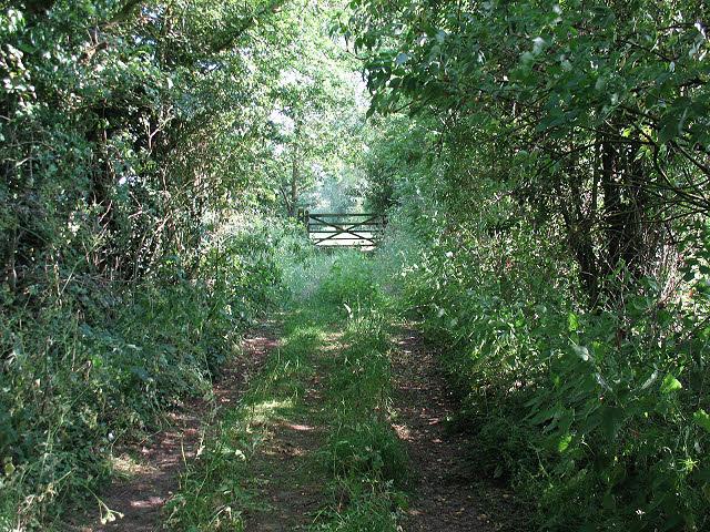 Footpath to Sproston