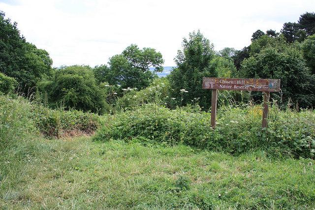 Chosen Hill Nature Reserve