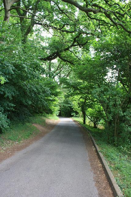 Single track roads descending Churchdown Hill