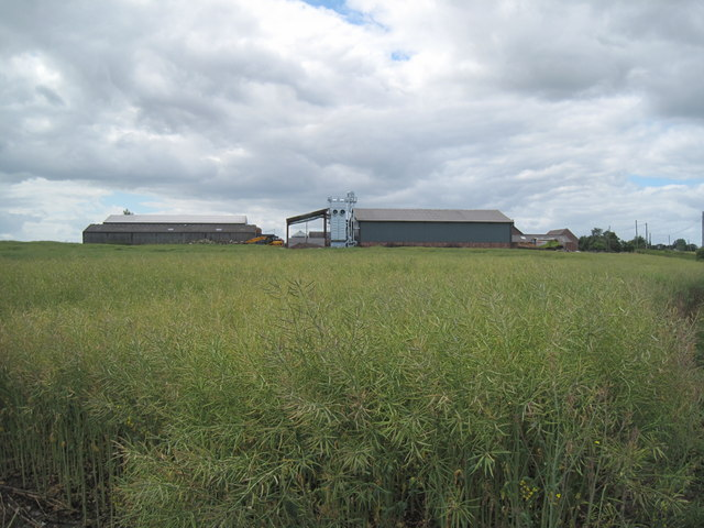 Ford Farm