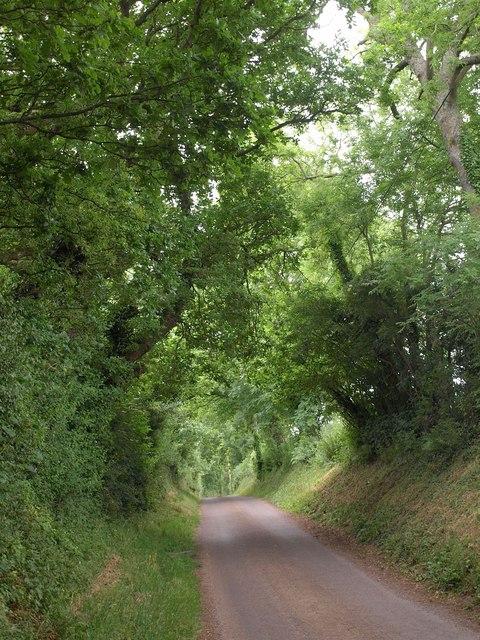 Silver Down Hill