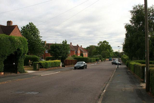 Coleman Road