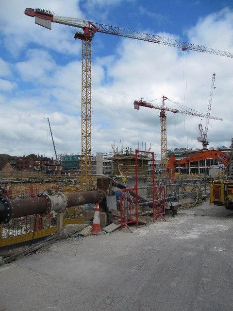 Cranes on view