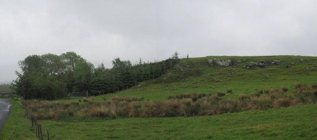 Disused Quarry near Honeystead