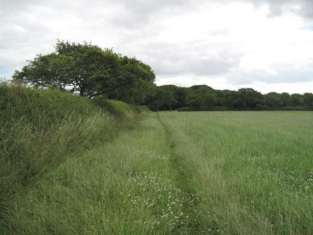 Eddisbury Way near Hoofield
