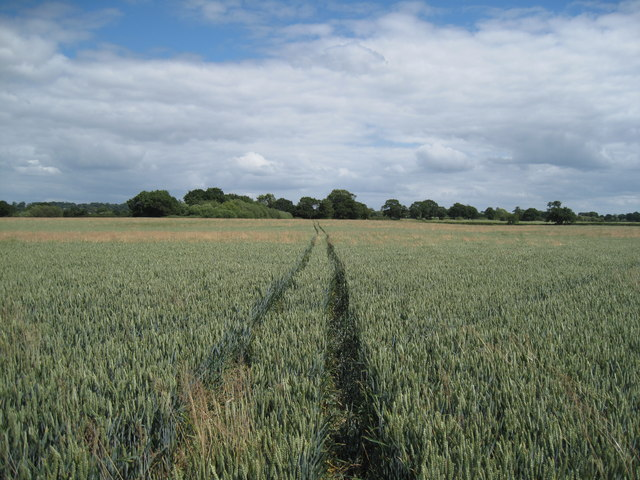 Footpath towards Tarporley