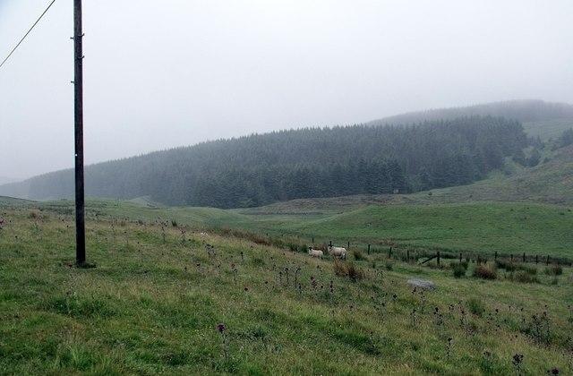 Towards Cairnoch Hill