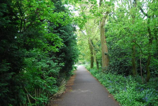 Path through Beckenham Place Park