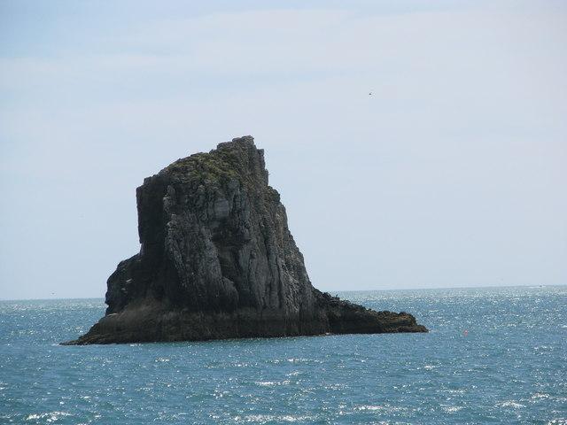 Cod Rock off Berry Head