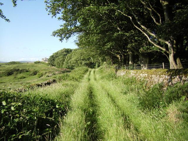 Green Hill Lane (Track) near Higher Addington