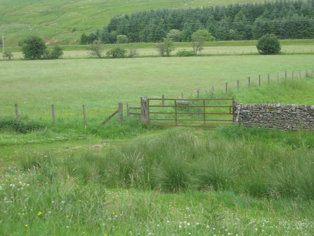 Gate to the fields with grazing land beyond