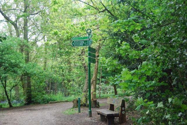 Green Chain Walk signpost, Beckenham Place Park