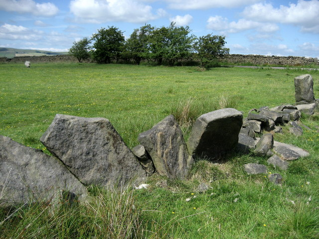 Vaccary Walling near Great Thorn Edge
