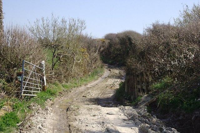 Farm Road and Footpath