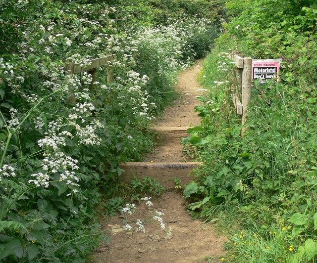 Jubilee Way enters Barkestone Wood