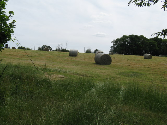 Hay bales at Sleeches Farm