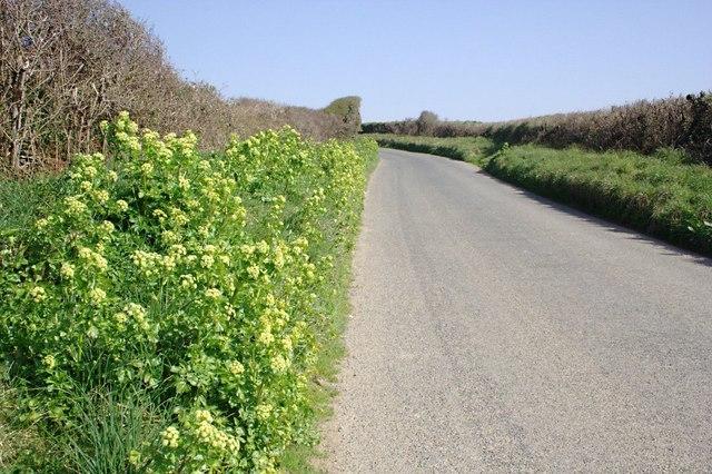 A Quiet Road