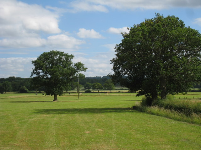 Fields off Haxted Road
