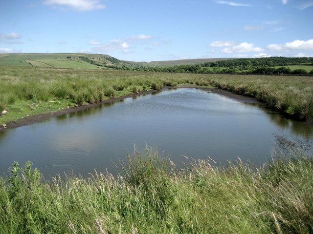 Muddy Pond at Slack