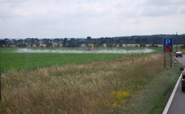 Irrigation by the A11