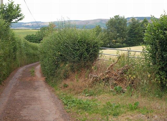 Gate on Wood Lane