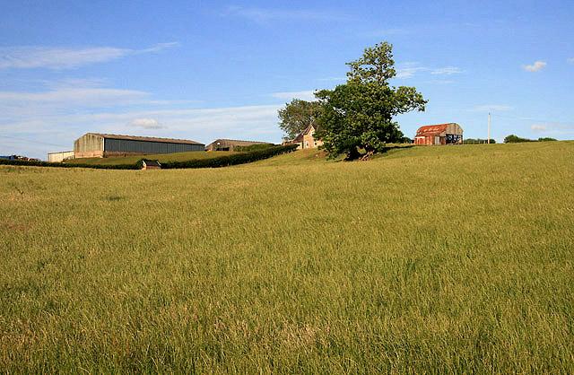 Farmland at Trow Knowes