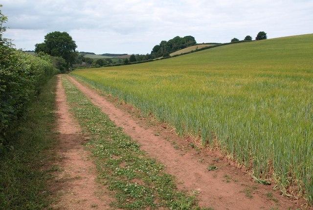 Footpath, Stogumber