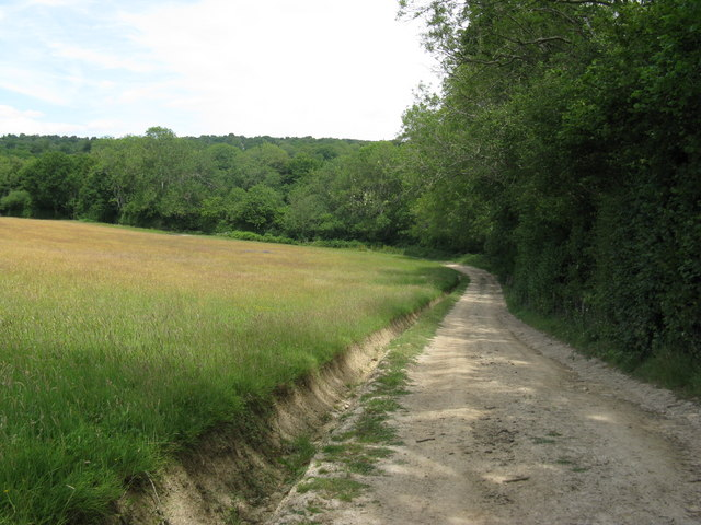 Field drainage ditch by bridleway to Sweethaws