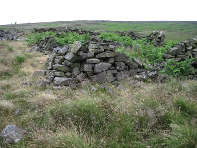 Sheepfold and Cairn on Brampton East Moor