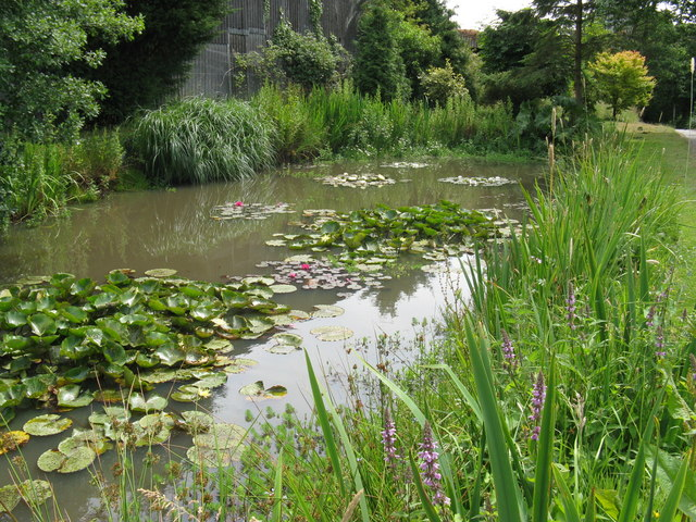 Colourful mature pond at Sweethaws Farm