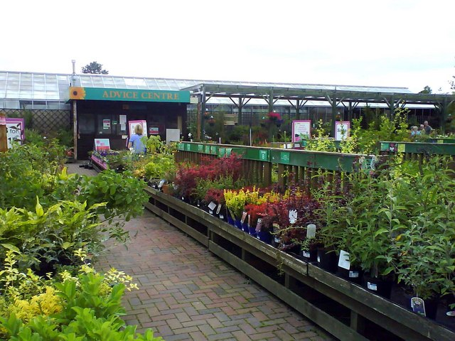 Dobbies Garden Centre near Shinfield