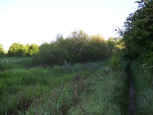 Footpath by the Chesterfield Canal
