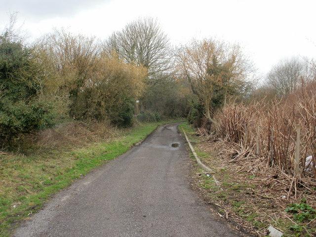 Farmland path, Ponthir