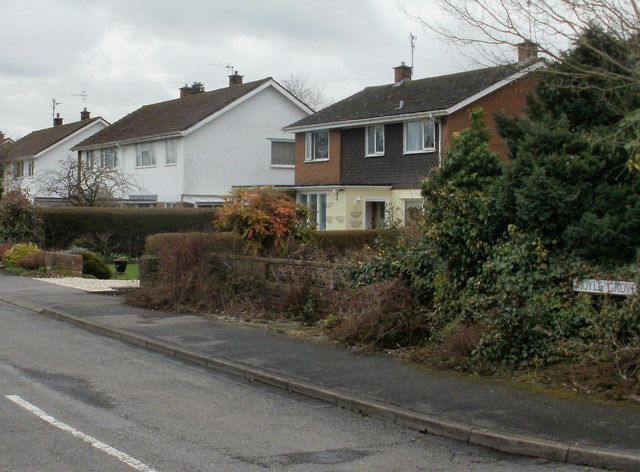 Moyle Grove, Ponthir
