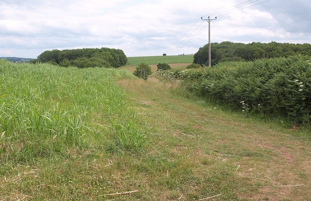 Footpath near Vellow